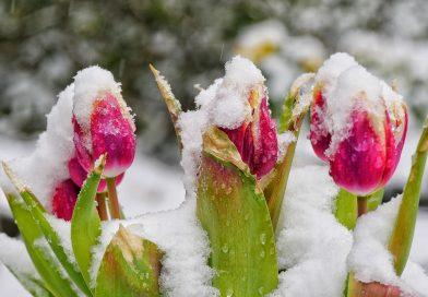 Erste Aprilhälfte fast winterlich