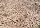 Extreme Dürre in Mexiko
